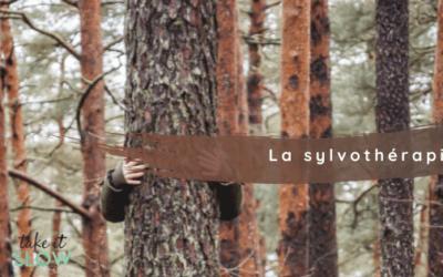 Sylvothérapie : Et Si Les Arbres Nous Soignaient ?